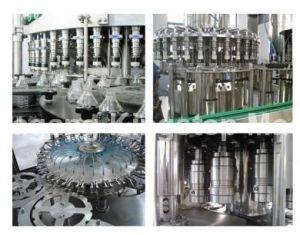 Juice Making Machine (RCGF18-18-6) pictures & photos