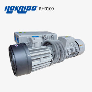Rotary Vane Vacuum Pump for LED Applied (RH0160) pictures & photos