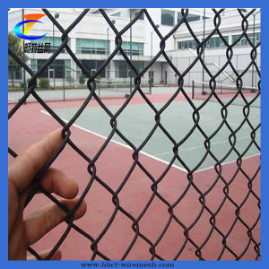 Sports PVC Coated Chain Link Fence (CT-Fence) pictures & photos
