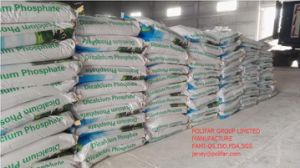 Dicalcium Phosphate (DCP) Feed Additives pictures & photos