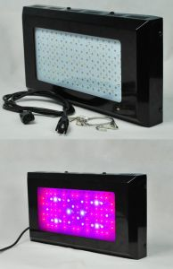 80*3W 85-265V Red: Blue=8: 1 LED Grow Lighting pictures & photos