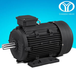 Permanent Magnet AC Synchronous Motor (18.5kw, 15kw, 380V-50Hz) pictures & photos