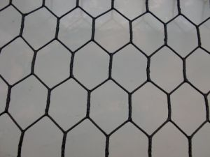 "1/4"", 3/4"" Cheap Chicken Wire /Rabbit Wire Mesh /Galvanized Hexagonal Wire Mesh pictures & photos"