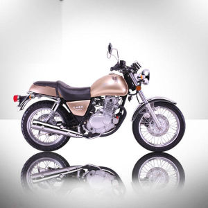 Hot Sale Sporting Motorcycle 250cc Gnmotorcycle pictures & photos