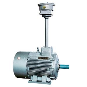Ybf2 Explosion Proof Motor for Mine pictures & photos