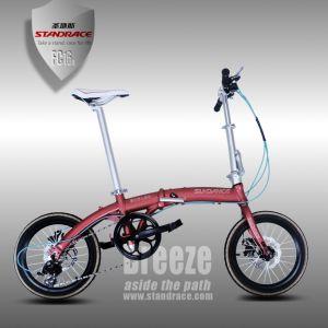 High Quality Titanium Alloy Bike