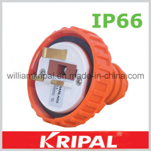 3pin 13A IP66 Weather Proof Plug pictures & photos