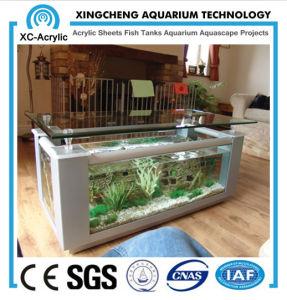 Cubic Acrylic Aquarium pictures & photos