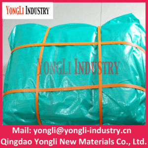 Chinese Customized PE Laminated Tarpaulin pictures & photos