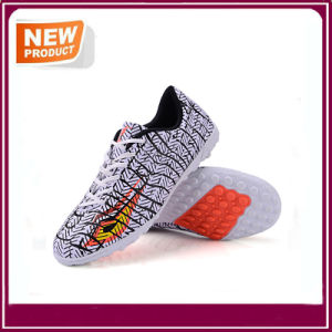 Sport Athletic Indoor Lace up Soccer Shoes Wholesale pictures & photos