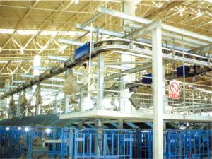 Automotive Conveyor Chain, Cc5 pictures & photos