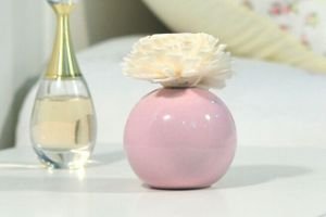 Flower Fragrance Diffuser for Gift Sets Aroma Diffuser Air Freshener pictures & photos