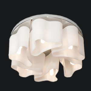 Best-Selling Fashion Natural Contemporary Glass Ceiling Light Lamp pictures & photos