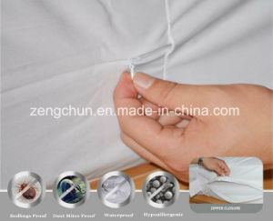 Cotton Terry Waterproof Anti Bed Bug Mattress Encasement Zipper Cover pictures & photos