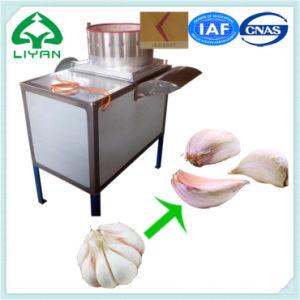 Garlic Deep Processing Equipment Garlic Segment Separator pictures & photos