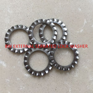 DIN6798A External Serrated Lock Washer pictures & photos