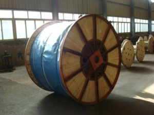 Galvanized Steel Wire Rope pictures & photos