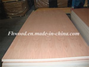 Natural Beech Veneered Decorative Plywood pictures & photos