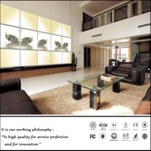 Glass Sliding Door Pantry Caibnet for Livingroom (FY-1012) pictures & photos