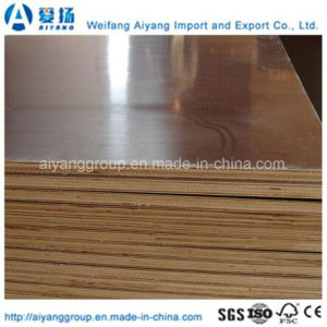 Brown Film Faced Plywood for Form Work pictures & photos