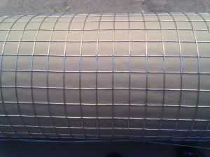 Hot Dipped Galvanized Welded Wire Mesh for Building Construction Material pictures & photos