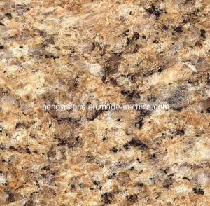 Granite Standard Granite Slab Size Granite Stone