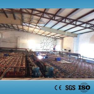 100t/Day Block Ice Plant, Ice Block Factory, Block Ice Machine