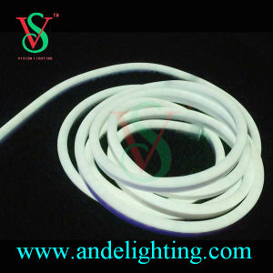 RGB LED Neon Flex Light SMD28356 2wires pictures & photos