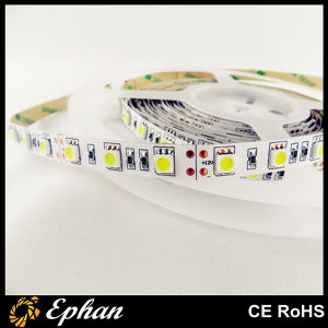 Best Quality SMD5050 60LED/M LED Strip Light (EPSST50-60-W)