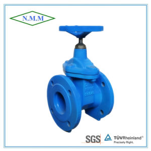 Cast Iron Rubber Wedge Non-Rising Stem Gate Valve pictures & photos