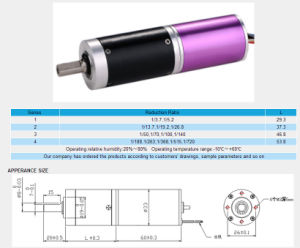 Pg33k40-33bl60-2440 Brushless Geared Motor pictures & photos