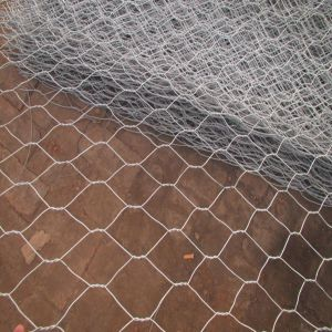 60*80mm, 80*100mm Heavy Galvanized Gabion Box pictures & photos