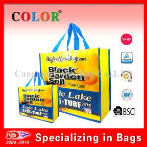 Wholesale PP Non Woven Reusable Shopping Bag