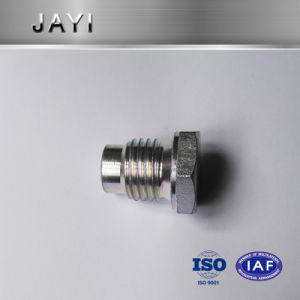 Hexagon Screw with Zinc-Plated by CNC Machinery with Through-Hole pictures & photos
