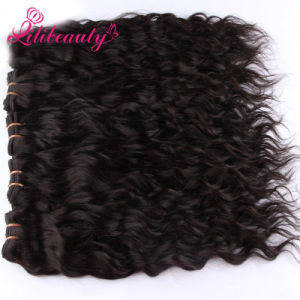 Remy Mongolian Hair pictures & photos