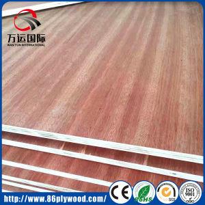 Decorative Melamine/ Gurjan Wood Veneer Laminated Plywood pictures & photos
