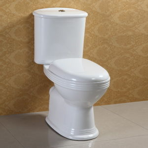 Water Saving Two Piece Toilet pictures & photos