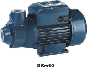 Micro Vortex Pump (DKm 60) pictures & photos