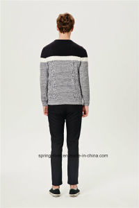 Cable Knit Wool Blend Men Knitwear pictures & photos