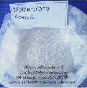 Metenolone Acetate Primobolan 100mg/Ml Methenolone Acetate Injectable Powder
