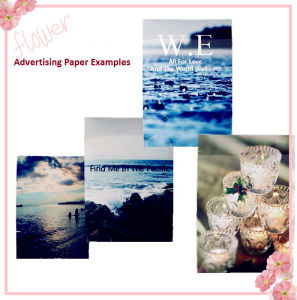 Colorful Advertising Display Light Box pictures & photos