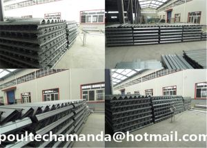 Automatic Hot/Cold Galvanization Broiler Chicken Battery Cage for Farming Hot Selling (H Frame Type) pictures & photos