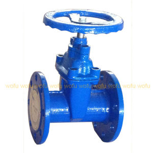 """3"""" OS & Y Gate Valve pictures & photos"""