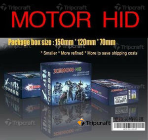 HID Xenon Conversion Kits for Motorcycle