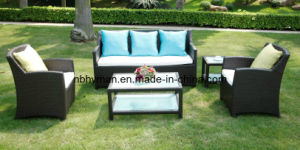 Patio Furniture (FSS-1604)