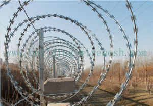 Galvanized Razor Wire/Concertina Wire/Razor Barbed Wire pictures & photos