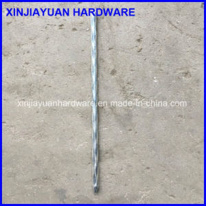 Zinc Plated Spiral Wire Nail for Sale pictures & photos