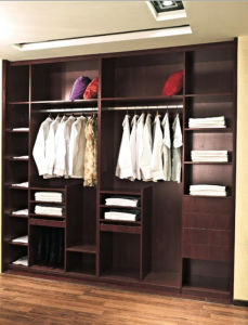 European Style Modern Design Wardrobe (Br-Cr003) pictures & photos