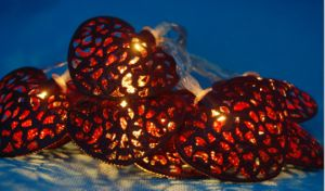 Light Chain Decoration Light with LED pictures & photos