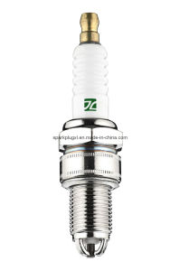 Spark Plug (F7TJC W20EB N7BYC W7DTC) pictures & photos